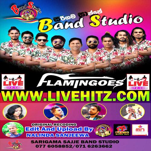 Ahungalla Flamingoes Live In Sarigama Sajje Band Studio 2020-07-04 Live Show Image