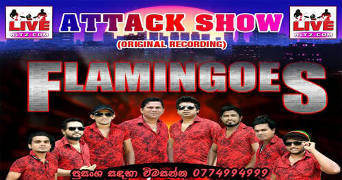 Ahungalle Flamingoes Vs Delighted Attack Show Live In Eheliyagoda 2020-01-26 Live Show Image