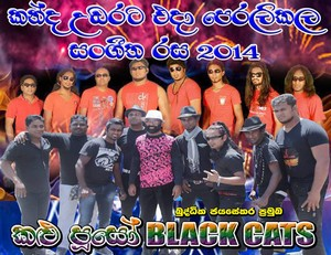 Black Cats Live In Watawala 2014 Live Show Image