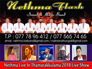 Nethma Flash Live In Thamarakkulama 2018 Live Show Image