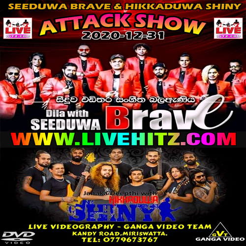 Fast Hit Mix Songs Nonstop - Seeduwa Brave Mp3 Image