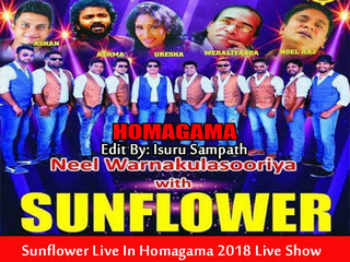 Sunflower Live In Homagama 2018 Live Show Image